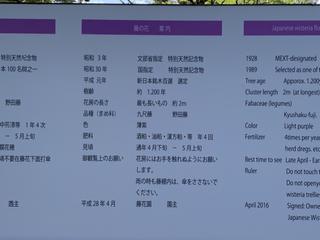 67CED720-914F-4E66-AD3A-1C570D23D235.jpg